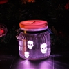 Candle Choice Mason Jar Light Indoor Outdoor Jar Lantern Light Battery Operated Lantern with Remote and Timer Halloween Light, Skull, multi-color